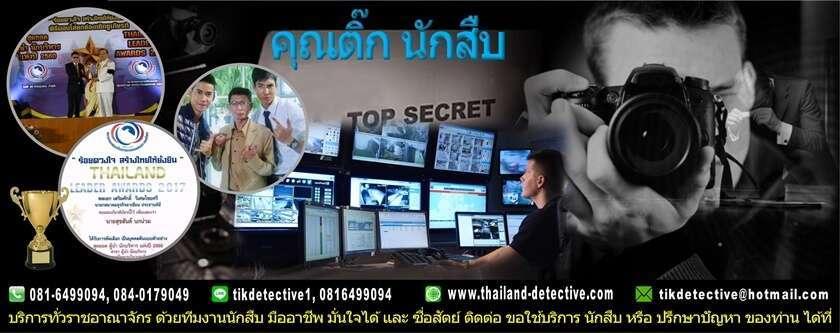 นักสืบมืออาชีพ
