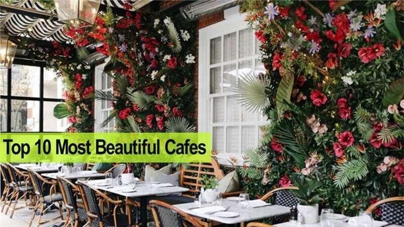 กาแฟและสวนสวย