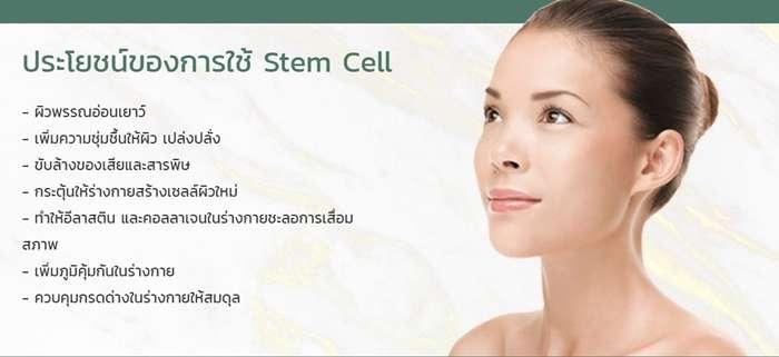 การฉีดสเต็มเซลล์ทำงานได้จริงหรือไม่