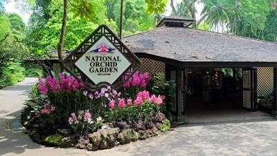 สวนกล้วยไม้แห่งชาติ National Orchid Garden