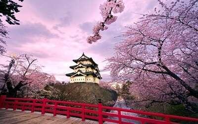 สวนตะวันออกพระราชวังอิมพีเรียล(Imperial Palace East Gardens)