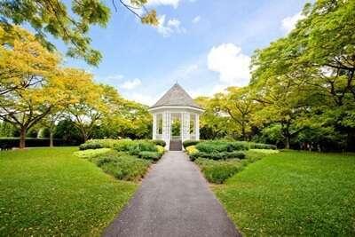 สวนพฤษศาสตร์สิงคโปร์(Singapore Botanic Garden)