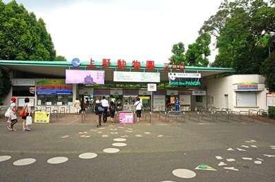สวนสัตว์อุเอโนะ (Ueno Zoo)