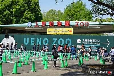 สวนสัตว์อุเอโนะ(Ueno Zoo)