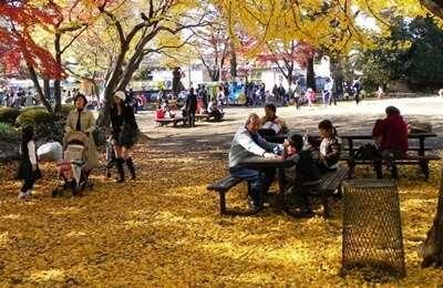 สวนอิโนะกาชิระ (Inokashira Park)
