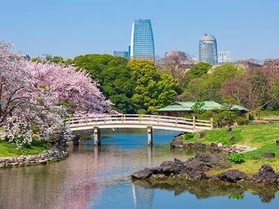 สวนฮามะริเคียว(Hama Rikyu)