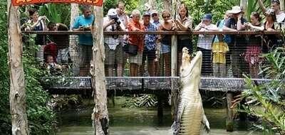 การผจญภัย Hartley's Crocodile