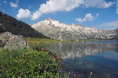 เขตอนุรักษ์ธรรมชาติแห่งชาติของ Néouvlele
