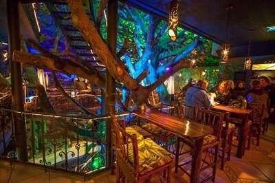Tree House restaurant and café