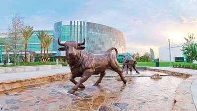 University of South Florida ประเทศ United States