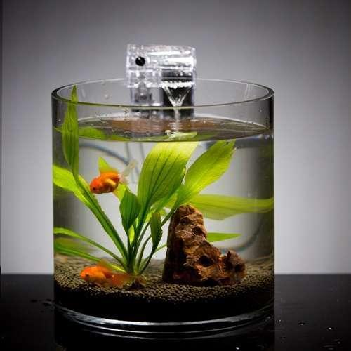 รีวิวตู้ปลาขนาดเล็กที่ดีที่สุด