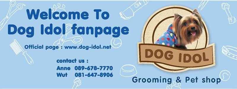 ชี้เป้า 10 อันดับร้านบริการอาบน้ำตัดขนทั่วกรุงเทพ เพิ่มความน่ารักให้สัตว์เลี้ยงคุณ 4