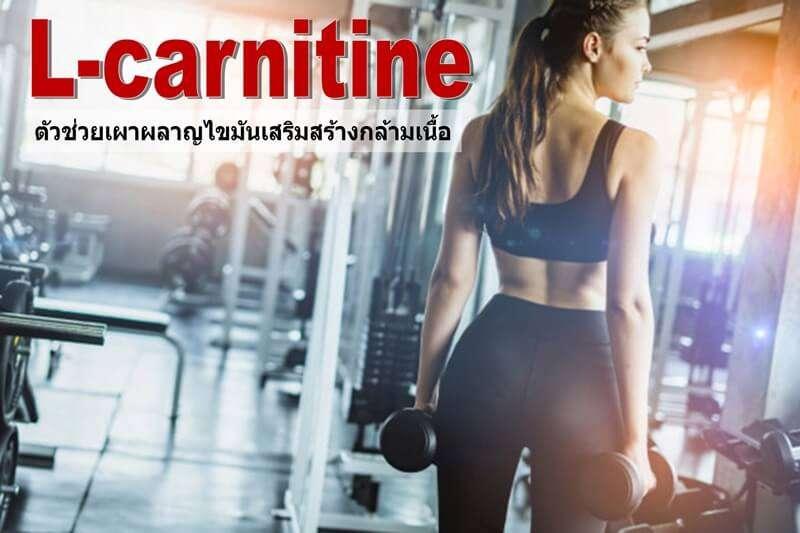 ดูแลหุ่นให้ดูดีได้อย่างใจด้วย10 L-carnitine ตัวช่วยเผาผลาญไขมันเสริมสร้างกล้ามเนื้อ 1