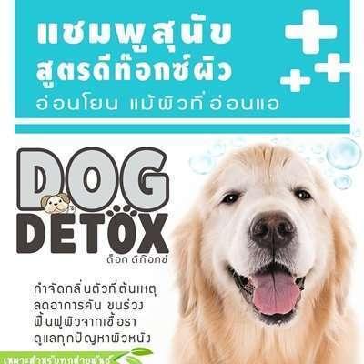 คนรักสุนัขห้ามพลาด แชมพูสำหรับสุนัข 10 แบรนด์ดัง ช่วยบำรุงผิวหนังให้ขนนุ่มสลวยดูแข็งแรง [wpsm_custom_meta type=date field=year] 8