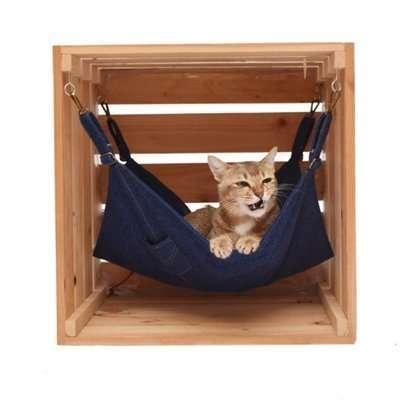 10 เปลแมว คุณภาพดี น้องแมวชอบที่นิยมมากของปี [wpsm_custom_meta type=date field=year] 14