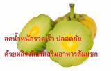ลดน้ำหนักรวดเร็ว ปลอดภัยด้วยผลิตภัณฑ์เสริมอาหารส้มแขก