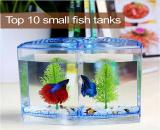 10 ตู้ปลาขนาดเล็กที่สามารถซื้อออนไลน์ง่ายๆ